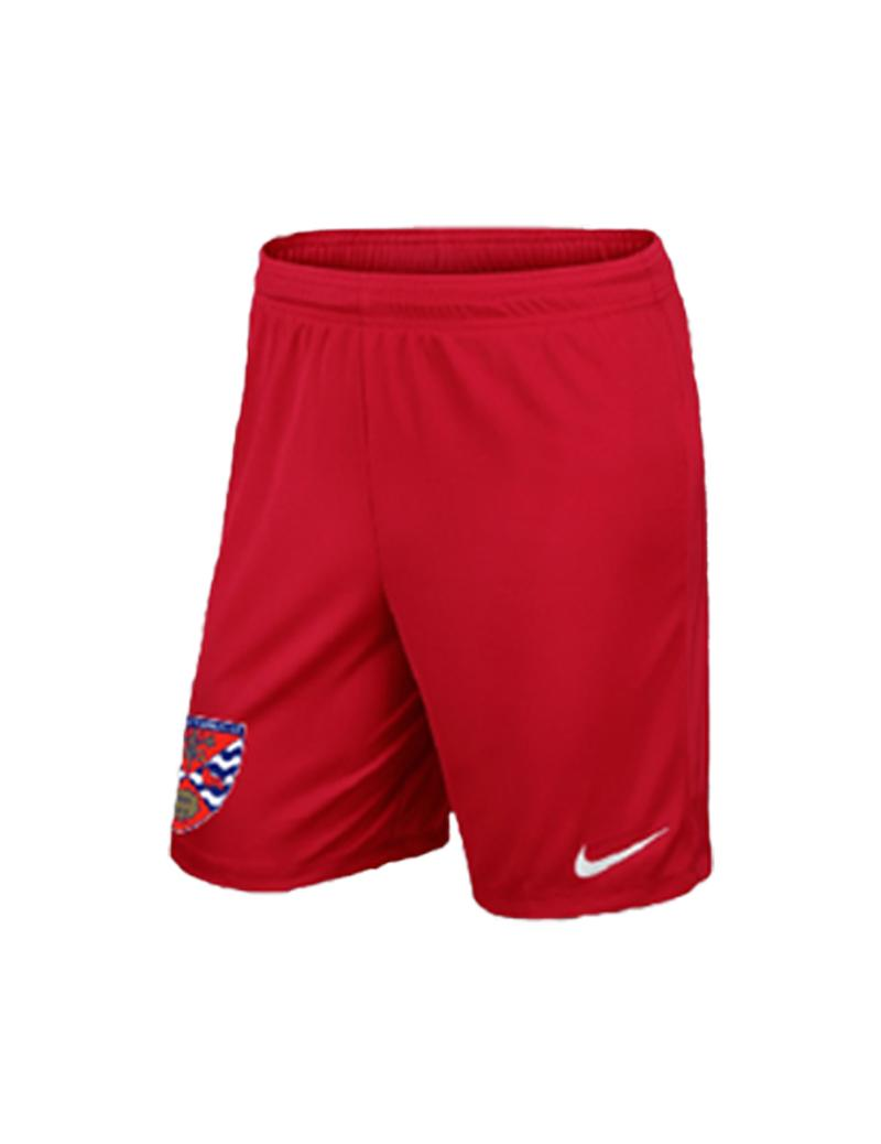 2020/21 Nike Junior Away Shorts